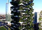 Buon compleanno Bosco verticale, il nuovo simbolo dello skyline di Milano nel mondo