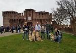 FOTO Assalto dorato: il raduno dei golden retriever alla Rocca di Soncino