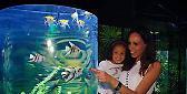 Domenica 12 festa della mamma a Gardaland SEA LIFE Aquarium