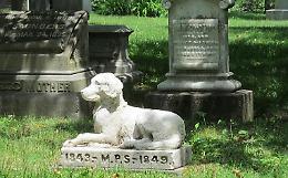 Cani e gatti sepolti con i padroni: adesso si può