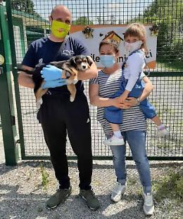 Cuccioli «a ruba», festa e adozioni in canile