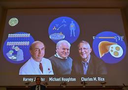 Il Nobel per la Medicina alla scoperta del virus dell'epatite C
