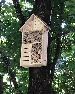 Nell'aiuola il bee-hotel: ecco «l'oasi delle api»