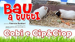 Cobi, Cip&Ciop: non solo cani