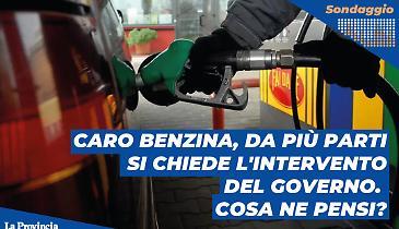 Caro benzina, da più parti si chiede l'intervento del Governo. Cosa ne pensi?