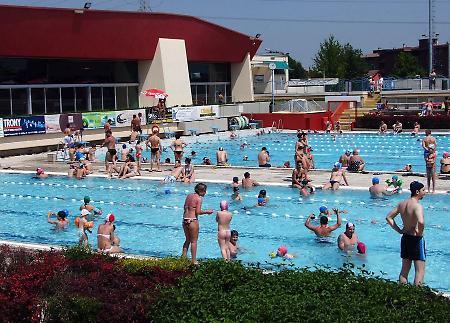 Allarme nutrie alla piscina comunale la provincia - Piscina rovereto ...