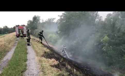 VIDEO I pompieri spengono due incendi dolosi lungo l'argine dell'Oglio